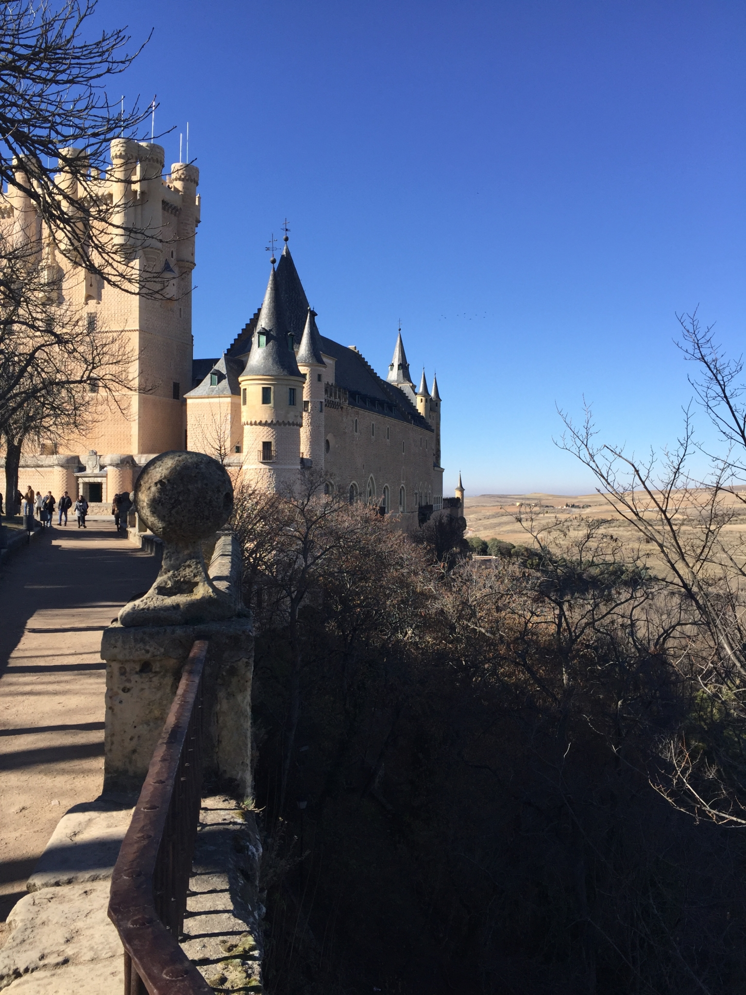 The castle for Cinderella or The Alcazar of Segovia.