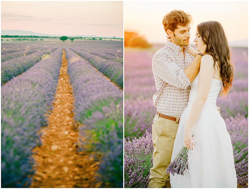 Elopement in lavender field